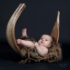 Newborn Shooting with Baby Anna (alexander.dischoe) Tags: newborn newbornshooting neugeborene shooting babyshooting babyportrait kokos studio studioaufnahme portra portrait porträt baby girl annegeddes nikon nikond7100 nikon18200mm d7100 dslr dx