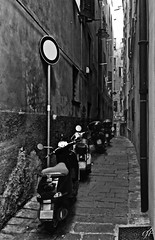 """Narrow Streets"" (Alleys of Genoa). (giannipaoloziliani) Tags: monocromo biancoenero monochromatic blackandwhite narrow narrowsstreets street streetphoto caruggi vicoli streetphotography vicolidigenova alleys alleysofgenoa genova genoa genoacity italia italy liguria motors architectures unesco downtown centre city citt perspectives prospettiva moto case houses walls windows dark darkness buio strange strong oscuro scuro obscure flickr italianstreets tipicals hdr signal sidewalks prospettica strettoia urbanstreets details streetdetails muri dettagli shadows ombre luci lights lamp finestre pareti stones stradina strada streetlife urbanlife citylife old oldstreets historic"