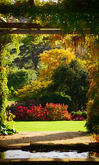 English Autumn (Barry.Turner.Photography) Tags: barry turner trees river landscape sony gardens chichester a65 england uk colour westdean southdowns