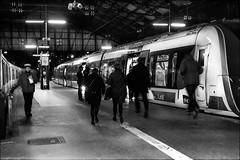 Retardataires.../ Latecomers (vedebe) Tags: noiretblanc netb nb bw monochrome trains gares gare humain people paris rue street ville city urbain