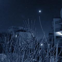 Objectif Lune (godran25) Tags: nuit lune tige rve bleu objectiflune