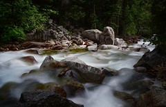 choose your thoughts, as you would your companions... (Alvin Harp) Tags: littlecottonwoodcreek littlecottonwoodcanyon utah july 2016 naturesbeauty naturepix nature foreststream mountainstream canyoncreek creek stream forest mountainforest fe41635zaoss sonyilce7rm2 teamsony alvinharp