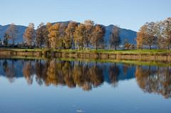 Staffelsee bei Uffing (murnau_am_staffelsee) Tags: landkreisgarmischpartenkirchen bayern oberbayern staffelsee ger murnau