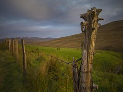 A supporting post. (foto.pro) Tags: wales snowdonia national park fence barbed wire boundary hills sky winter bleak