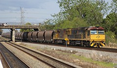 5002 and 5021 have just departed Aurizon's Hexham yard with MR977 coal train (bukk05) Tags: rpaunsw5000class5002 rpaunsw5000class railpage:loco=5002 railpage:class=127 5002 5021 wagons explore export engine railway railroad railpage rp3 rail railwaystation railwaystations train tracks tamron tamron16300 trains qrn qrnational tarro unitedgrouplimited ugl photograph photo loco locomotive horsepower hp ge ge7fdl16 flickr freight diesel dieselelectriclocomotive station standardgauge sg spring 2016 australia artc 5000class 5020class zoom canon60d canon coal coaltrain c40aci nsw newsouthwales nswr newcastle mainline hexham aurizon aurizoncoal hunter huntervalley