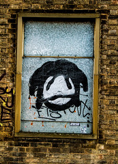 framed sad face (PDKImages) Tags: pussy clown street sheffield art broken windows cat sloth horror goth abandoned stairs girl beauty love industrial contrasts coffin
