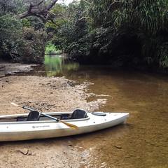 Ein Kanu namens Wahrnehmung (the maki) Tags: iriomote japan canoeing urauchiriver perception