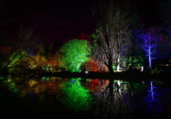 Enchanted Woodland Syon Park London 2016 (Simon & His Camera) Tags: trees woods enchanted london night dark contrast colours gardens green horizon isleworth lights lake middlesex nature outdoor reflection river simonandhiscamera syon syonhousepark syonpark syonhouse tree vignette water winter