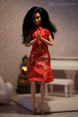 little china girl (photos4dreams) Tags: littlechinagirlp4d dress barbie mattel doll toy photos4dreams p4d photos4dreamz barbies girl play fashion fashionistas outfit kleider mode puppenstube tabletopphotography birdy