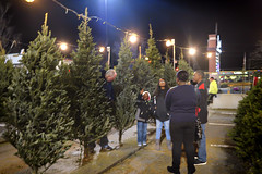 12/04/2016365 Main Street Project  244 of 365 (Sixstring563) Tags: 365 main street project laurel lions club christmas tree sale shopping center