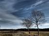 daskabat to doloplazy scene by mike esson december 2015 (mike.esson) Tags: mike esson daskabat photography fotografie obloha mraky clouds sky scene countryside czech europe