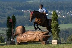 DSC05291_s (AndiP66) Tags: markus fuchs altbron springen dubenmoos solothurn derby 2014 august pferd horse schweiz switzerland kantonsolothurn cantonsolothurn concours wettbewerb horsejumping springreiten pferdespringen samstag saturday 22august2015 2015 cantonofsolothurn contest equestrian sports pferdesport sport sony sonyalpha 77markii 77ii 77m2 a77ii alpha ilca77m2 slta77ii sony70400mm f456 sony70400mmf456gssmii sal70400g2 andreaspeters biberist ch