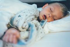 Dog TIred (jrobfoto.com) Tags: family sleeping vacation england bed ben personal sleep tired blanket asleep