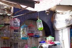 IMG_5535 (itsallegra) Tags: shopping open market markets spanish morocco souk medina rabat