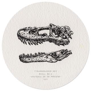 Coco Dávez - tyranosaurus