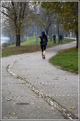 Run baby run (LaSarix) Tags: autumn parco autunno