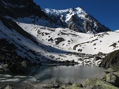 Grand_Parcours_Alpinisme_Chamonix-Edition_2014_ (38)