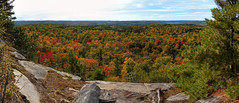 Fall Foliage Vista (Garry9600) Tags: autumn trees panorama ontario canada landscape lumix outdoor stitched algonquinpark cans2s fz200