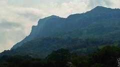 Montañas de Xilitla (JuanGl) Tags: naturaleza mountain mexico montaña huasteca sanluispotosi xilitla huastecapotosina