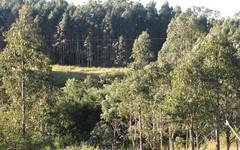 - Harlow, Hogarth Range NSW