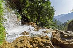 Rajaji National Park (wietsej) Tags: zeiss sony 1635 sal1635z a7rii wietsejongsma