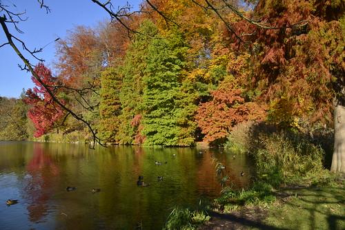 L'étang de la Longue Queue aux mille couleurs