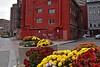 Urban Beautification (AntyDiluvian) Tags: street flowers boston downtown planters massachusetts atlanticavenue financialdistrict beautification urbanbeautification paintover