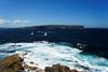 20151101-25-North Head (Roger T Wong) Tags: city sydney australia nsw newsouthwales 2015 theheads seaocean sony2470 rogertwong sel2470z sonyfe2470mmf4zaosscarlzeissvariotessart sonya7ii sonyilce7m2 sonyalpha7ii