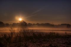 Sonnenaufgang im Nebel, Fogy Sunrise (Klaus Ficker) Tags: fog clouds sunrise canon germany nebel sonnenaufgang eos5dmarkii kentuckyphotography klausficker