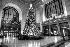 Union Station (d_russell) Tags: christmas blackandwhite tree blackwhite kansascity unionstation hdr ef24105mmf4 canon5dmarkiii