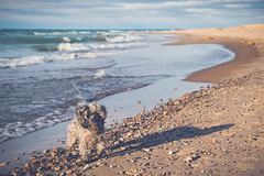 IMG_0076 (katebartnik) Tags: statepark winter dog lake fall beach landscape sand view michigan dunes lakemichigan grandmere yorkiepoo
