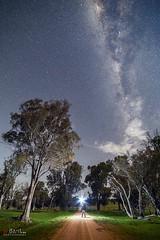 The Dark Road. (Bill Thoo) Tags: obley nsw australia sony a7rii samyang 14mm ngc milkyway longexposure night stars explorer landscape travel country bush rural