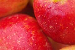 Apples (frankbehrens) Tags: apfel pfel apple apples