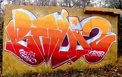Woods Beni'z (Benji_s) Tags: benjis beniz writingletters writing illegal lilill colors spraypaint spraycans sprays graffiti graffz graff graffitiletters letters lettering gelocrew gelo bombing bomb wall piantings can cans 2016