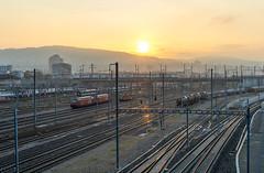 Low morning sun (jaeschol) Tags: europa hardbruecke kantonzrich kontinent kreis5 morgen morning schweiz sonne stadtzrich switzerland zeit morninglight