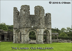 Lavabo at Old Mellifont (Cistercian). (mazurka666) Tags: oldmellifont lavabo senobrien nikond3200 suirvalleyphotographicgroup ire ireland cistercian