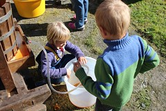 Fresh apple juice from press (Local Food Initiative) Tags: permaculture apple day apples press pressing cider group sustainable orchard juice