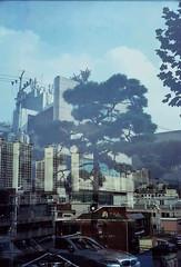 seoul72 (samica jones) Tags: seoul korea chaos mysterious life death atmosphere voigtlander double exposure urban obscure bessa r cinestill 800t experiment