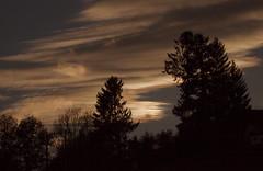 La journée se termine bien (mrieffly) Tags: coucherdesoleil canoneos50d 100400issériel ombres silouettes ciel