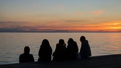 Silhouettes (Infomastern) Tags: malm vstrahamnen goodnightsun hav sea silhouette siluett solnedgng sunset