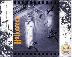 Halloween frame (aryanne money) Tags: halloween background frame silhouette vector flower bat pumpkin grunge ghost blot ink illustration art fly autumn green cartoon evil fun carving dark creativity fear flying abstract pattern foliage copyspace decoration design artwork filigree scroll creative drawing white