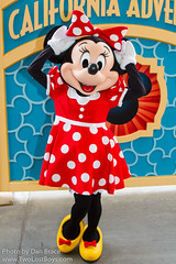 Minnie Mouse (VISA Meet 'n' Greet)