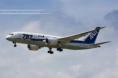 BRU - Boeing 787-8 (JA822A) All Nippon Airways (Aro'Passion) Tags: other livery 787 7878 ana all nippon airways canon aropassion airport aircraft airlines aroport atterrissage bru brussels bruxelles zaventem 60d natw boeing photography photos ja822a landing approche approach finale