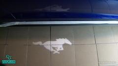 Mustang_30 (holloszsolt) Tags: ford mustang 50 outdoor vehicle sport car nanolex si3 hd autokeramia