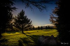 Autumn in Wicklow (Szabo Peter) Tags: canon1022mm canon550d djouce ireland landscape ultrawide wicklow szabo magyarok autumn