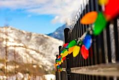 December ~HFF (Karen McQuilkin) Tags: december hff fence lights wasatch mountains bokeh karenmcquilkin christmaslights christmas