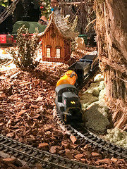 HTS-27 (Peter Parides) Tags: unitedstates christmas trains newyorkbotanicalgardens newyork new york city