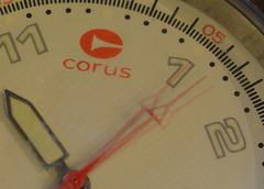 The Arrow of Time never stops moving forward (Clint__Budd) Tags: macromondays arrow