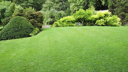 lawn service miami