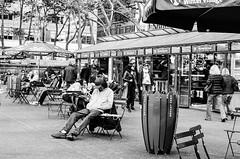 napping (mfauscette) Tags: 35mm bw bryantpark fsc ishootfilm istillshootfilm kodak nyc nikon nikonf6 analog blackandwhite film filmisnotdead filmshooterscollective kodaktx400 street travel trix400